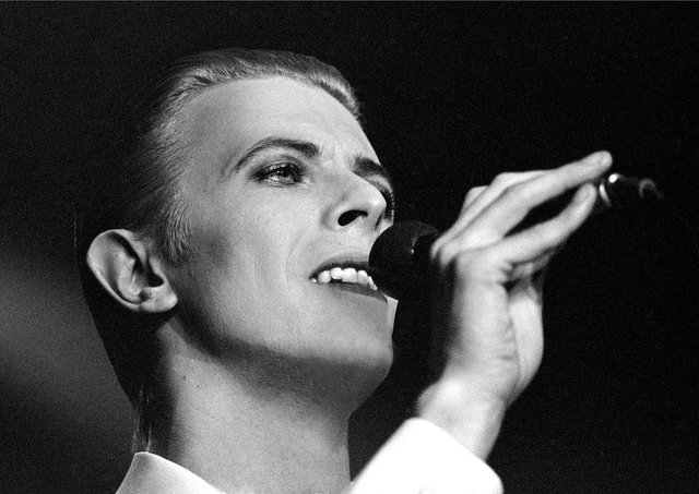 David Bowie performing in Stockholm Photo Print 8 x 10