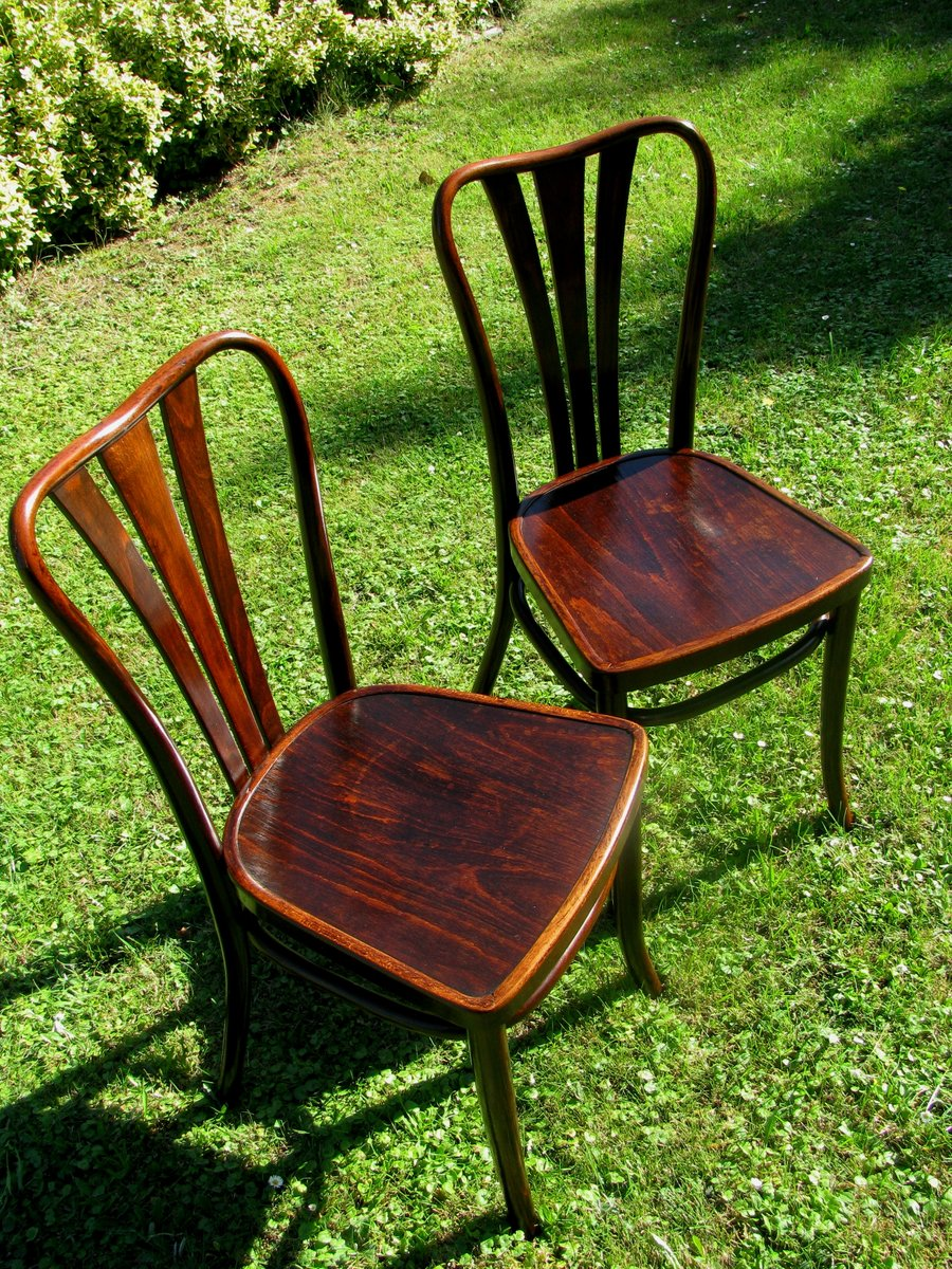 Vintage Dining Chairs From Thonet 1930s Set Of 6 For