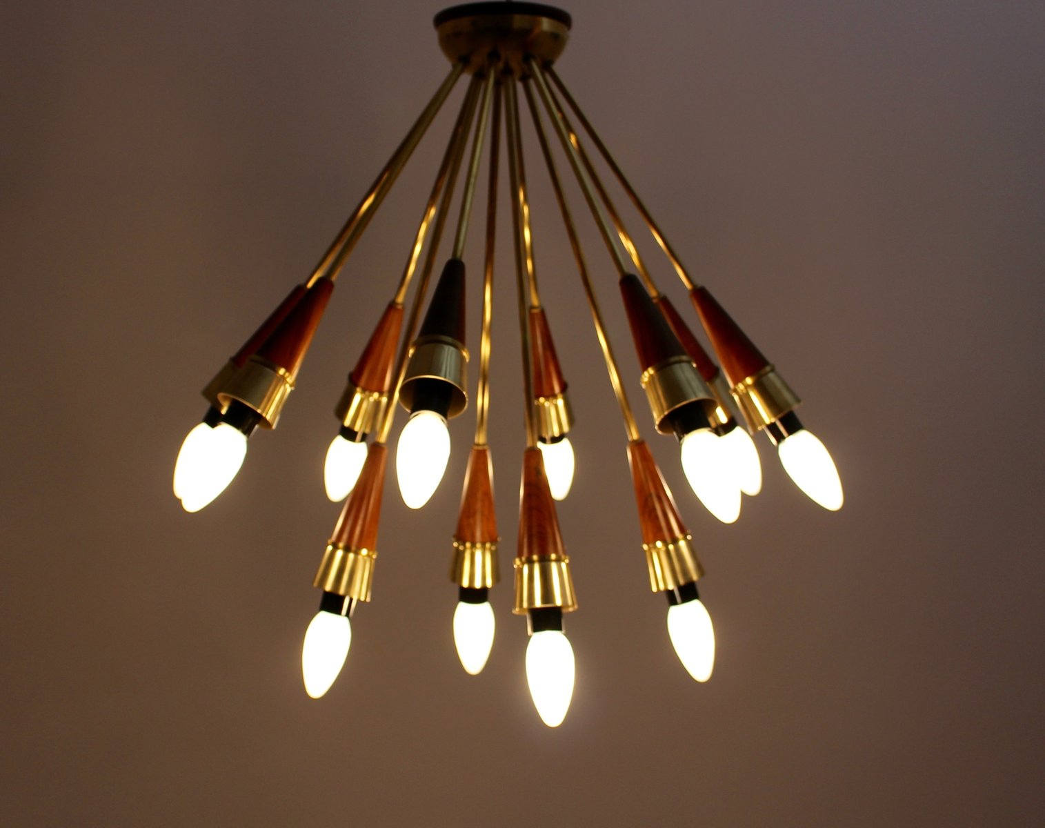 Mid Century Modern Ceiling Light 1950s For Sale At Pamono