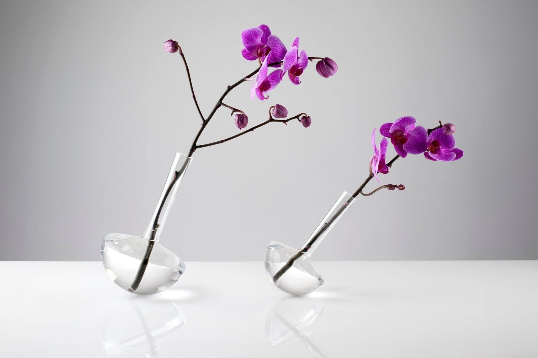 gauge klarglas vase f r einzelne blume von jim rokos f r giant mountains of bohemia glassworks. Black Bedroom Furniture Sets. Home Design Ideas