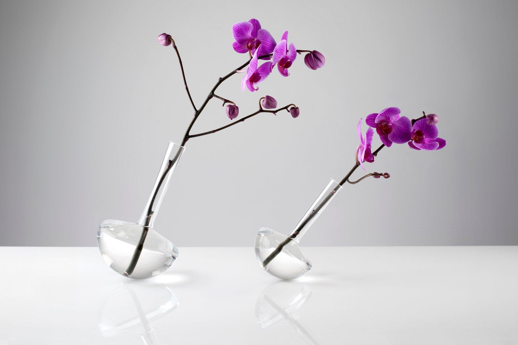 gauge klarglas vase f r einzelne blume von jim rokos f r. Black Bedroom Furniture Sets. Home Design Ideas