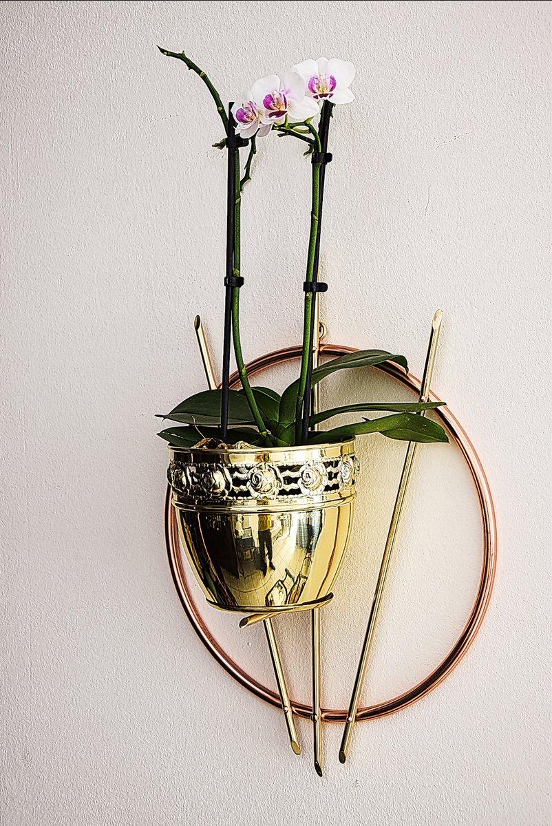 support pour plante mural 1950s en vente sur pamono. Black Bedroom Furniture Sets. Home Design Ideas