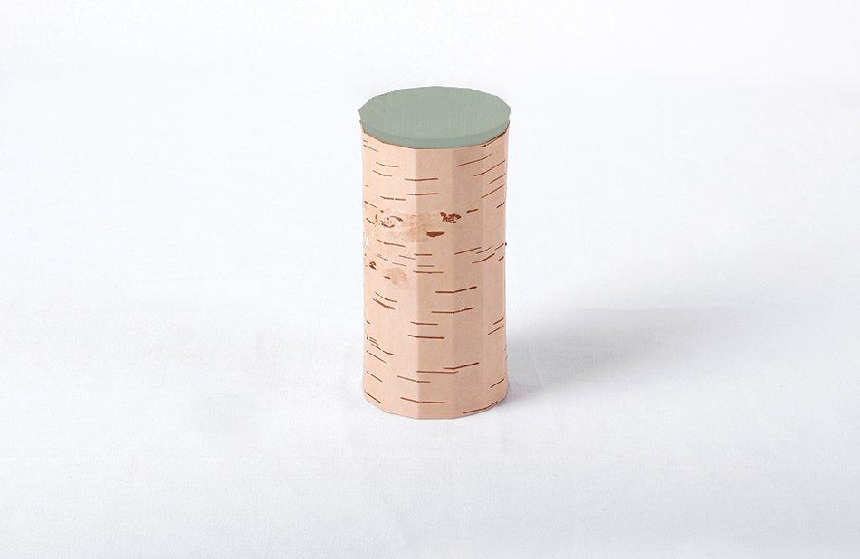 Tuesa Behälter mit minzgrünem Deckel von Anasta...