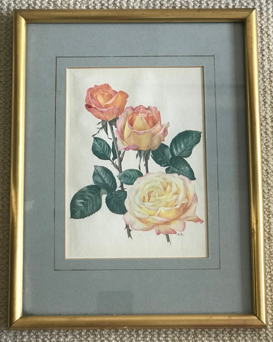 Gerahmte vintage Rose Drucke von Christian Dior, 2er Set bei Pamono ...