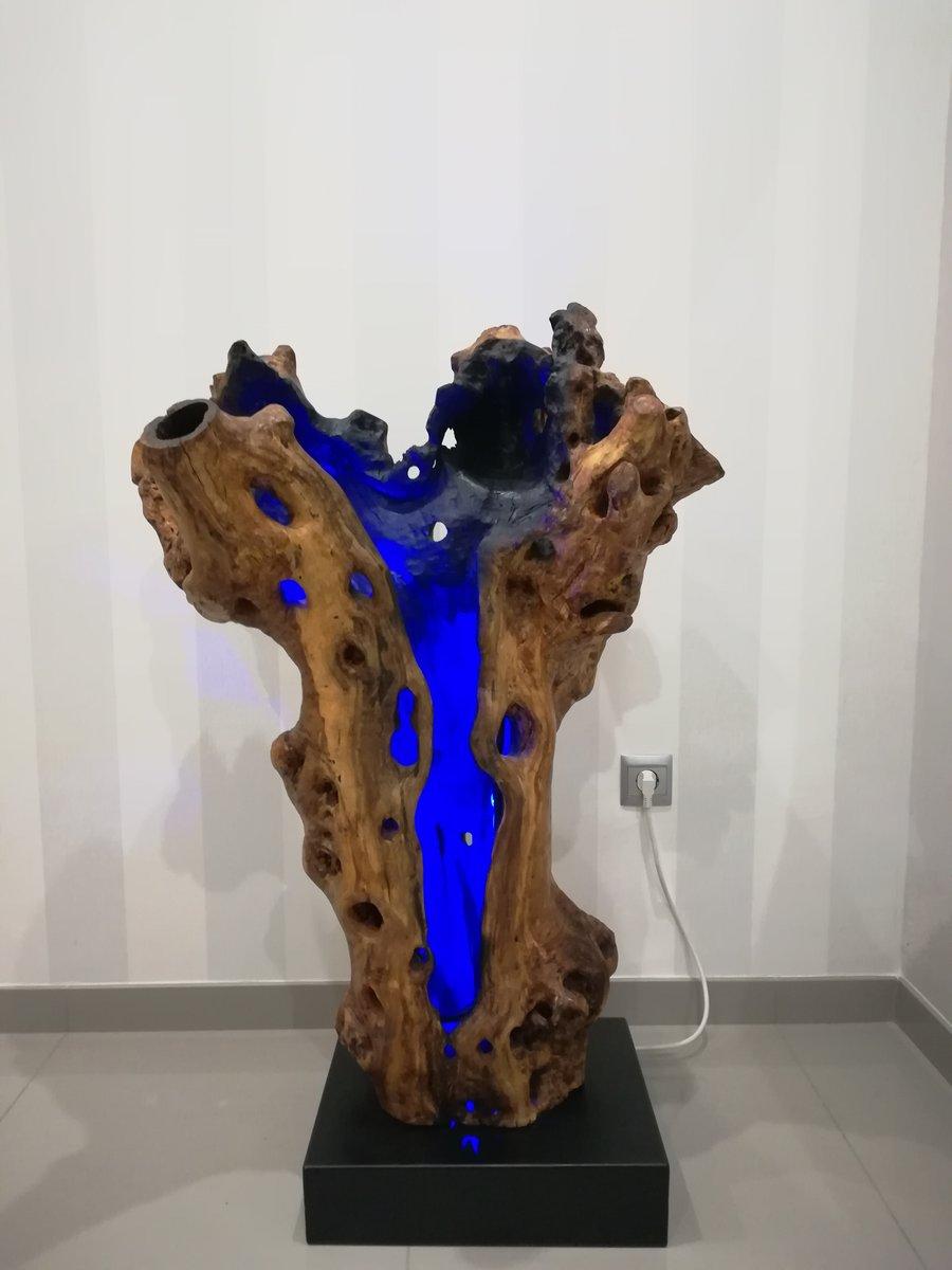 Lampe in uraltem Olivenbaum von Jerónimo Roldán